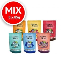 Zestaw Próbny Dolina Noteci Superfood Mix 6 x 85g